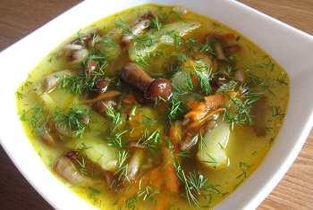Грибной суп из опят