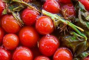 Соленые помидоры в бочке